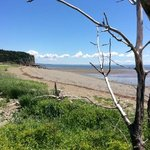 Bay Of Fundy 2014