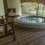 Lodge Plunge Pool