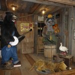Singing Bear & Raccoon  at Smoky Mountain Knife Works