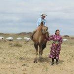 Camel Riding at Red Rock Ger camp