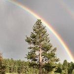 Rainbow @ Trip B