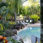 Tropical feel
