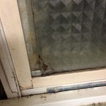 Mold on bathroom window