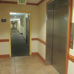 1st Floor Hallway Plus Our Nice Roomy Elevator To Get You To The Higher Floors