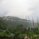 view of pelling from roof