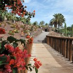 Jardín semitropical