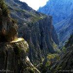 Entre muros de caliza se desliza el río Cares....
