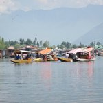 Shikaras on Dal Lake