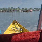 Over the Dal Lake
