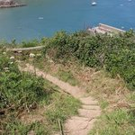View of the quay from cliff path at Gorran Haven, Cornwall