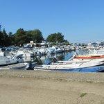 Porec harbour