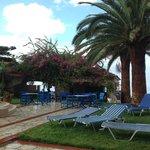 Pool & Day bar