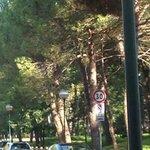 парк хемингуея