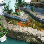 Рыбки в зимнем саду