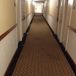 Hall way carpets were stained