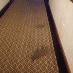 More stained carpets