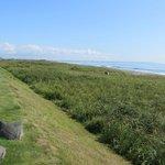 太平洋の海岸線
