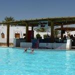 Cactus pool bar