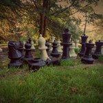 Anyone for garden chess?