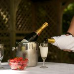 Champagne to celebrate - always plenty in the fridge!