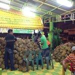 New address of Ucok Durian at jalan Wahid Hashim 30-32 Medan