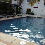 Nuestra piscina con camastros unica por la zona