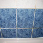 moldy shower grout