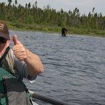 Moose Tours