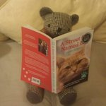 Teddy up to more mischief reading my book this time :) love the humorous touch :)