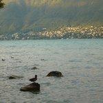 au bord d lac d'Annecy