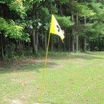 Limited Flight Nine Hole Golf Course