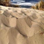 Oregon Dunes Rock