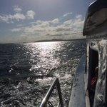coming back fron Nelsons Bay