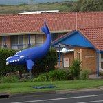 Foto de Blue Whale Motor Inn & Apartments
