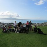 Views from Mt Victoria over to Rangitoto