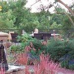 Abeja garden.