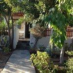 Bungalow Set in Fantastic Garden