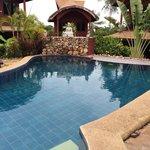 La piscine, très bien entretenu, très jolie cadre