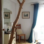 Tree in the room
