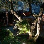 Un angolo del giardino al piano terra