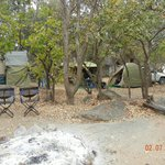 Camp site with trees for shade & to climb
