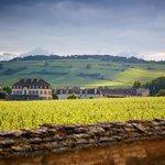 Un chateau du XVIIIème dans 20 hectares de vignes