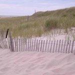 Walkway down to the beach. Beware of the deep sand!