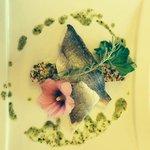 Photo de Hotel Restaurant La Terrasse