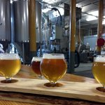 Banded Horn Brewing Co Tap Room