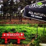 92 Beans
