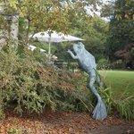 """Artwork"" in the garden"