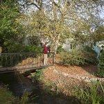 Delightful bridge over the stream