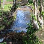 Dimanyan River runs thru the property