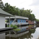 Houseboats in the swamp